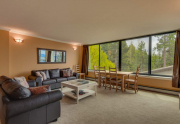 9200-Brockway-Springs-Dr-62-print-001-7-Living-Room-4200x2800-300dpi